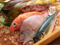 Qualidade e variedade em peixes!