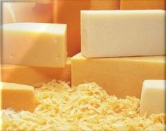 Rei do queijo - poços de caldas