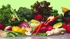 Alimentos de qualidade para você!