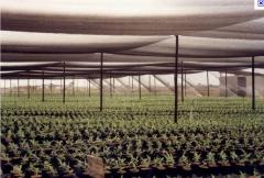 Foto 17 educação e formação - Ima-instituto Mineiro de Agropecuária
