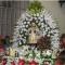 Salesianos inspetoria são joão bosco - foto 8