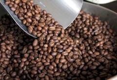 Grande variedade em cafés!