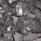 J carvalho carvões  - foto 1