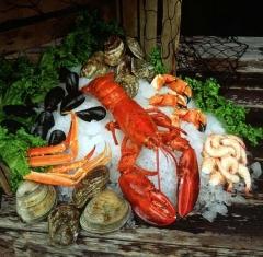 Frutos do mar frescos e de qualidade