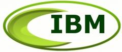 Ibm serviços