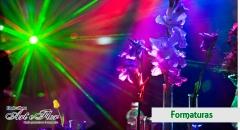Foto 4 comércio no Santa Catarina - Floricultura art e Flor
