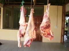Qualidade e variedade em carnes!