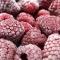 Produtos alimentícios pastelina - foto 6